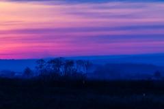 Dawn (Raoul Pop) Tags: dawn trees sky sunrise fall colors somewhere moldova romania ro