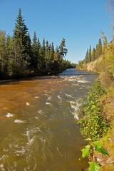 Rapids Below Rowlinson Creek (MIKOFOX  Show Your EXIF!) Tags: river whitewater canada nordenskioldriver yukon fall water fujifilmxt1 spruce rocks landscape rapids creek xt1 september showyourexif mikofox xf18135mmf3556rlmoiswr