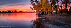 Autumn's Fire (OJeffrey Photography) Tags: cottonwoodtree gold golden fallcolors fallcolor sunrise reflection fire panorama pano ojeffrey ojeffreyphotography jeffowens colorado co nikon d800