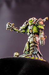 20130516_Models 1_048 (Liu Longtian) Tags: macro circle photography miniatures iron models press shenyang minis privateer warmachine kingdoms cryx privateerpress ironkingdoms orboros circleoforboros warhammerclub