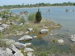 DSC036Wainfleet Quarry May 20, 201309 (Wolfmaan) Tags: camping ontario canada outdoors jrt rocks hiking barefoot barfuss wainfleet