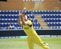 Great fielding by Mitchell Marsh