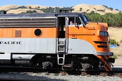 (CaliforniaRailfan101 Photography) Tags: nilescanyonrailway ncry pacificlocomotiveassociation pla brightsideyard richmondpacific rprc southernpacific sp sp5623 sp9010 southernpacific5623 southernpacific9010 kraussmaffeiml4000cc kraussmaffei emd sw900 gp9 ge 44tonner steam steamlocomotive shay 3truckshay heisler baldwin 2662t mallet clovervalleylumberco4 80tonner usax usax298 wp westernpacific wp918d westernpacific918d f7a switcher