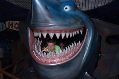 DSC06567.jpg (DeArment) Tags: disneytrip2016 epcot findingnemo jonathan sonyilcea7s shark