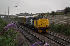 37401 - 5Z02 - Peterborough East Jc - 19.08.2016(1) (Tom Watson 70013) Tags: class37 37401 queen scots br drs large logo blue 2016 peterborough caroline 5z02 tractor diesel train railway station east road