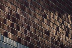Abstract (KevPBur) Tags: canon650d canonkissx6i canonrebelt4i canon70200mmf28lisiiusm canonextenderef14xiii wall bricks lines shadow sun texture canon650dcanonkissx6icanonrebelt4i