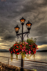 Lights By The Loch (Billy McDonald) Tags: hdr lights bay scotland duckbaymarina lochlomond flowers