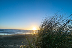 The First (jessecoleman2k) Tags: sanfrancisco beach grass landscape ocean seagrass wideangle ca unitedstates