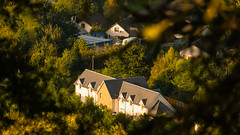 Birnam glimpsed through the trees (grahamrobb888) Tags: nikond800 sigma120400mm birnam building sunny