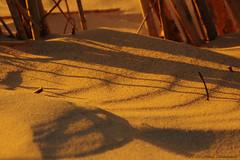 Belgian coast (Natali Antonovich) Tags: belgiancoast wenduine seasideresort seashore seaboard seaside romanticism parallels nature sand shadows