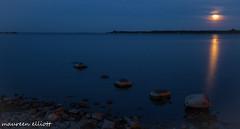 Shine On Harvest Moon (maureen.elliott) Tags: fullmoon water shine evening georgianbay stillness nature outdoors rocks landscape