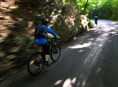 Kay Reeling in the Lads (Gee & Kay Webb) Tags: mtb mountainbiking forest clocaenog wales riding road trails trees nohanded