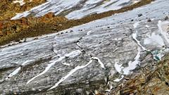 Rofenkarferner - Tirol - Austria (Felina Photography back in NL preparing for France) Tags: felinafoto felinaphotography felina photographer photography fotografia fotografie fotografo fotografa tourism turismo toerisme turismus tourismus hiking hike tour trip adventure hotspot excursion escursione excursions escursioni excursie tocht uitje ausflug gita poster wallpaper alps alpi alpen mountain montagna montagne landscape landschap paysage paesaggio nature natura natuur     austria sterreich oostenrijk tirol tyrol tztal nkbv c1 cursus course dutchalpineclub mountaineering alpinism wildspitze rofenkar rofenkarferner rofenkargletscher glacier ghiacciaio gletsjer gletscher ferner