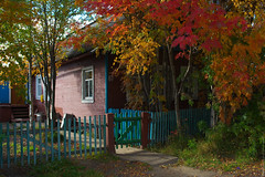 (engine9.ru) Tags:        mezen leaves autumn home fence colors