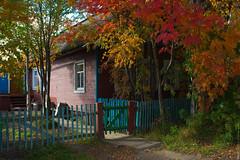 (engine9.ru) Tags:        mezen leaves autumn home fence colors