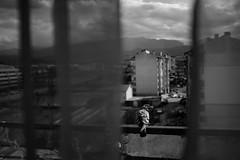 Pigeon on the Balcony Samokov, Bulgaria (c) Plabo 2016 #PlaboPhotography https://buffer-media-uploads.s3.amazonaws.com/5437a7810f3c5a1f6021e330/57e9004c9ffc493e34516a9e/0f854533657eab40e4a7d65828221077.jpg (plamenangelov) Tags: plabo plamenangelov plabonet bulgaria blackandwhitephotography