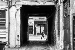 No Left Turn (m.o.n.o.c.h.r.o.m.e.) Tags: archway path cobbles breadstreetlane yellowline scotland edinburgh pedestrian lane sign streetsign edinbackstreets backstreets signpost noleftturn