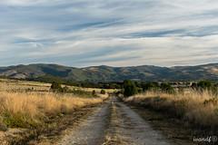 Sigue el camino (ivandabouza) Tags: aire libre paisaje verde galicia camino ourense naturaleza terra meiga