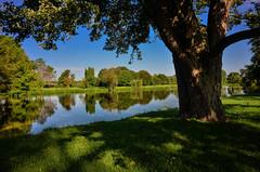 Ellis Lake (Explored) (Thomas Dwyer) Tags: ellis lake yellowsprings ohio landscape water nature tranquill scenic tree nikon coolpixa thomasdwyer lightroom nik explore explored