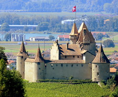 Standing guard (oobwoodman) Tags: switzerland suisse schweiz vaud aigle castle chateau vineyards vigne vignoble wein fortress burg rebe wine flag fahne drapeau