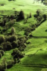 Scharzwald (marcus 1959) Tags: canong1xmii g1x schwarzwald blackforest outdoor nature green landscape