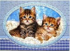 Kittens Curling up on a Blanket (Leonisha) Tags: puzzle jigsawpuzzle katze cat ktzchen kittens