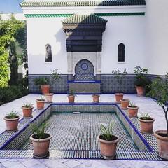 Grande Mosque - Paris (delphinebrg) Tags: grandemosque paris france jardin garden plante fontaine mosaque couleur color