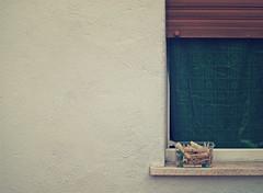 ordinaria amministrazione (Rino Alessandrini) Tags: bucato pinze muro finestra casa abitazione mollette quotidianet ordinario laundry wall dwelling house window clamps pegs ordinary everyday