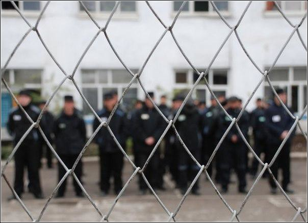 Мошенника, похитившему УКонстантина Титова 6$ млн, приговорили к12 годам колонии