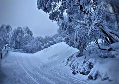 Falls Creek Victoria Australia (krillmerma) Tags: fv10 snow australia victoria falls creek blue