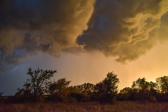 Early October Thunderstorm Series (thefisch1) Tags: uplift thermal cloud sky turbulence color colorful wind horizon pasture prairie flint hills tree blue stem grass nikon thunderstorm oogle calendar