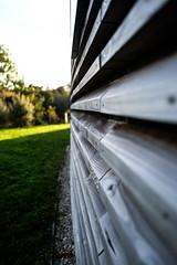 DSCF0254 (Emrys Schoemaker) Tags: autumn cotswolds gloucestershire westonbirt
