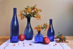 Cobalt Blue (Esther Spektor - Thanks for 11+ millions views..) Tags: stilllife naturemorte bodegon naturezamorta stilleben naturamorta composition art arrangement creativephotography artisticphoto autumn tabletop bottle fruit plum bouquet berry napkin glass linen pattern availablelight reflection white red yellow green blue cobalt orange beige golden estherspektor canon