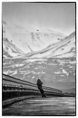 Shooting-birds (rarinn) Tags: bridge blackandwhite bw mountain bird birds canon iceland islandia photographer cloudy 70200 sland islande fjall br canon7d