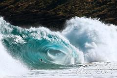 Sandy Beach, Oahu, Hawaii (anncecilphotography) Tags: ocean hawaii surf waves oahu recreation swell currents boogieboards aquatube bodysurfing touristdestination dangeroussurf visitordestination