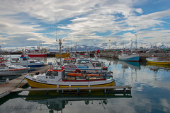 Fishing Boats in Husavik Harbour, Iceland (HHildebrand) Tags: island boot boat iceland fishing harbour watching whale hafen husavik wale angeln hsavk norurlandeystra