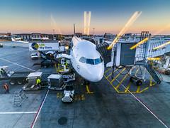 Airbus A330-300 at JFK International Airport (wabisabiph) Tags: travel usa window airplane airport wings twilight gate unitedstatesofamerica transport flight engine jfk airbus lufthansa skychefs baggages airbusa330300