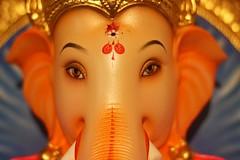 IMG_3371 (Aniket Sahamate) Tags: ganesha bappa ganpati ganeshchaturthi moraya