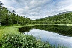 Stillness in Grnfjelldalen (Einar Schioth) Tags: stillness water sky summer day clouds canon cloud coast shore nationalgeographic ngc norway norge nature trees tree landscape lake gronfjelldal photo picture outdoor nordland einarschioth mirrors