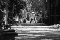 IMG_5161 (eugeniointernullo) Tags: murazzi po fiume river torino turin riposo restimg relax walking cammina