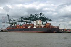 CSAV Toconao DST_7826 (larry_antwerp) Tags: port        belgium belgi          schip ship vessel        schelde        psa europaterminal csav hapaglloyd container csavtoconao 9627899