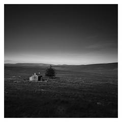 Little House (picturedevon.co.uk) Tags: nunscross princetown dartmoor devon england moors farm tree empty bw blackandwhite landscape sky le longexposure nisi 10stop fineart monochrome square nationalpark summer