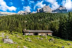 Malga Vallesinella alta-sullo sfondo Cima Brenta (Abboretti Massimiliano-Mountain,Street and Nature ) Tags: abboretti alps alpi dolomiti dolomites sonya7r2 sony madonnadicampiglio valrendena brenta moon anseladams