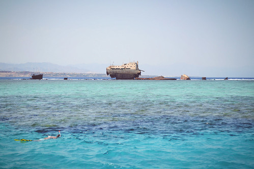 red sea snorkeling diving shipwreck yacht coral reef egypt