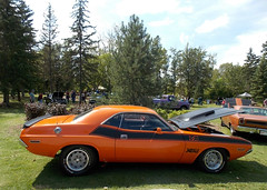 1970 Dodge Challenger (blondygirl) Tags: stalbert showshine stalbertcruisers auto car sturgeonrivervalley lionspark rocknaugust august6 20thanniversary sa 1970 dodge challenger ta 340 sixpak