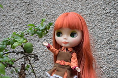 Reaching for a Quince! (Bebopgirl1969) Tags: blythe modmolly quince