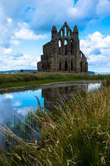 by the pond (pamelaadam) Tags: geolat54487894 geolon0605609 whitby whitbyabbey engerlandshire building abbey kirk holiday2016 faith spirituality august summer 2016 digital fotolog thebiggestgroup
