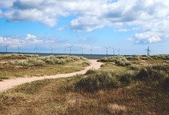 Trail to Beach (jleyshons) Tags: beach windmill sand ocean sea seagull sky cloud clouds coast coastline pretty grass pebbles great yarmouth england uk