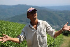 Akky-San in the Heavenly Tea Fields (Obubu Tea Farms) Tags: farmer green greentea japan japanesetea obubu obubutea tea teafarmer teafields wazuka