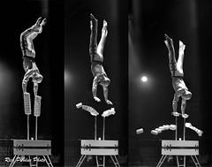 Encho Keryazov: Difficult Hand-balancing (Partridge Road) Tags: encho keryazov handbalancing circo hermanos vazquez chicago illinois